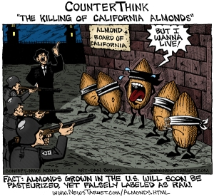 killing_almonds_600