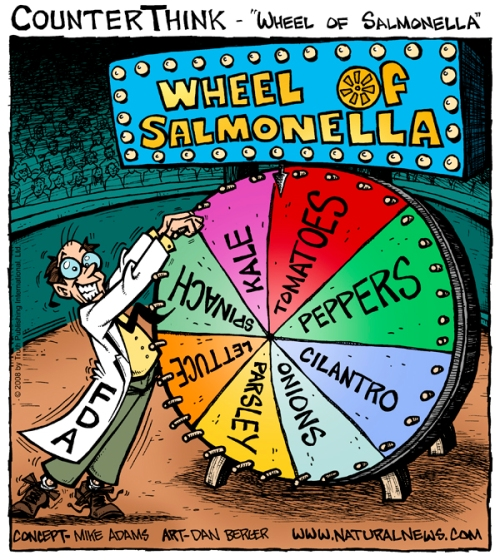 Wheel-of-Salmonella